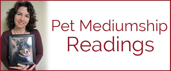 Pet Mediumship Readings