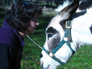 Cara and Poppy the donkey