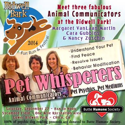 Pet Whisperers