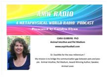 A Metaphysical World Radio